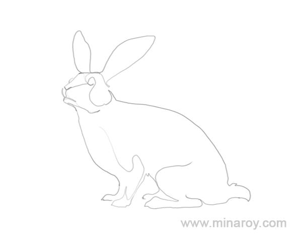 MinaRoy_rabbit_003.png