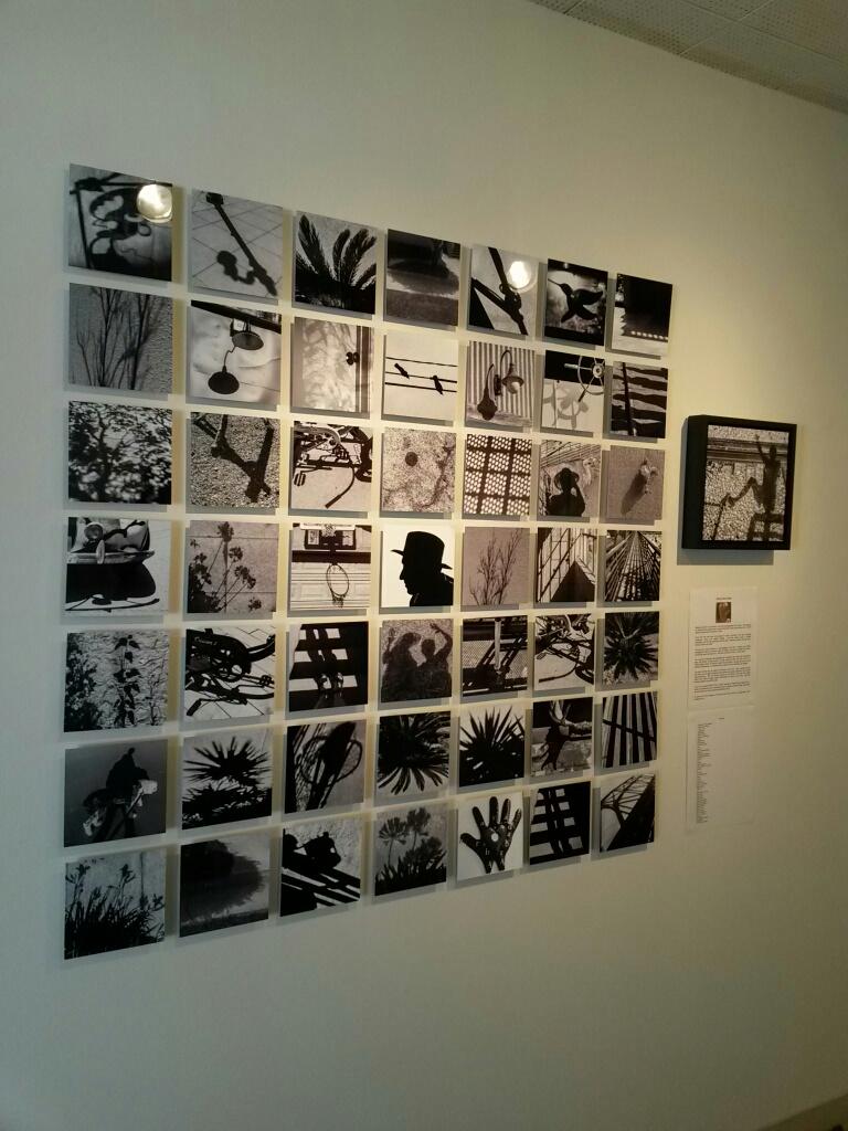 Barbara Lewicki's 50|50 Display