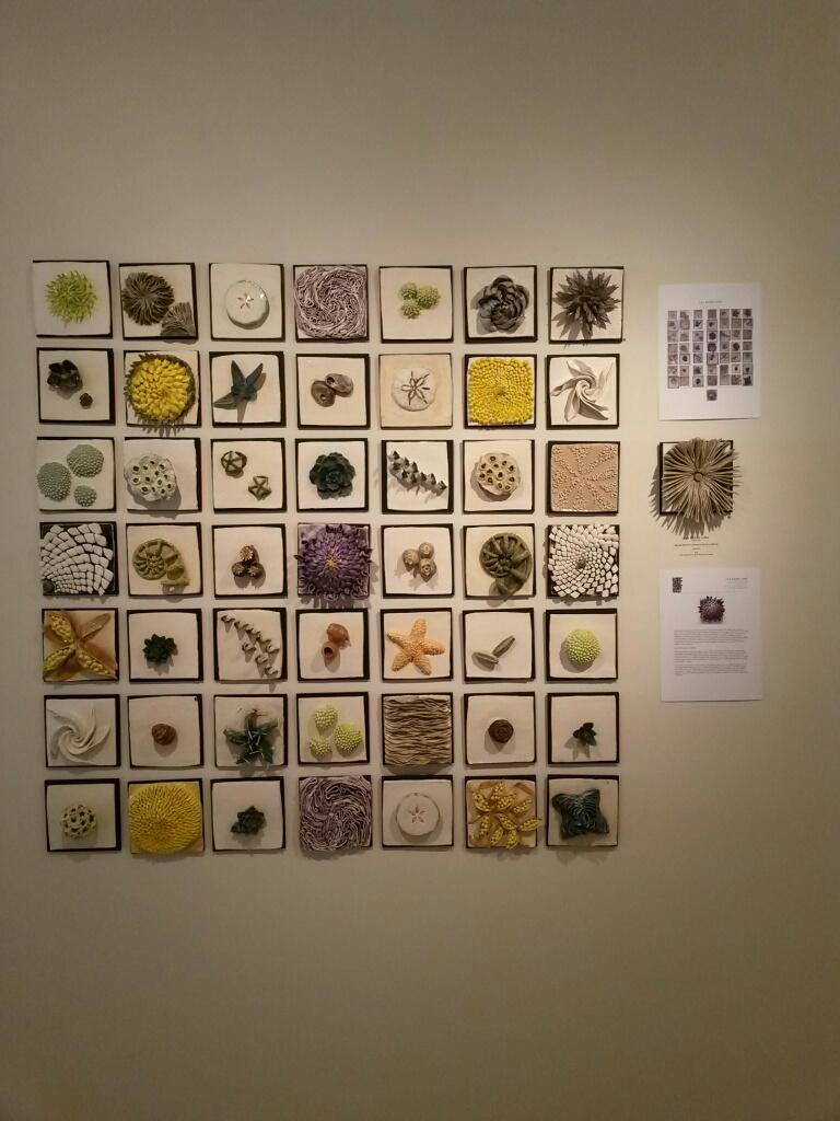 Lisa Moore-Long's 50|50 Display