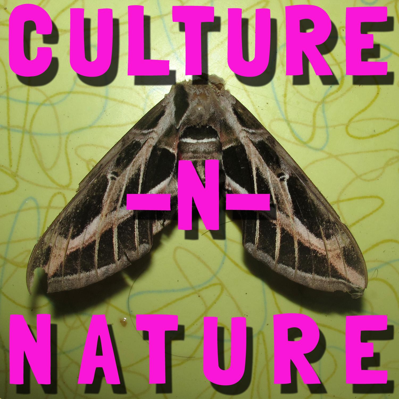culture-n-nature theme.jpg