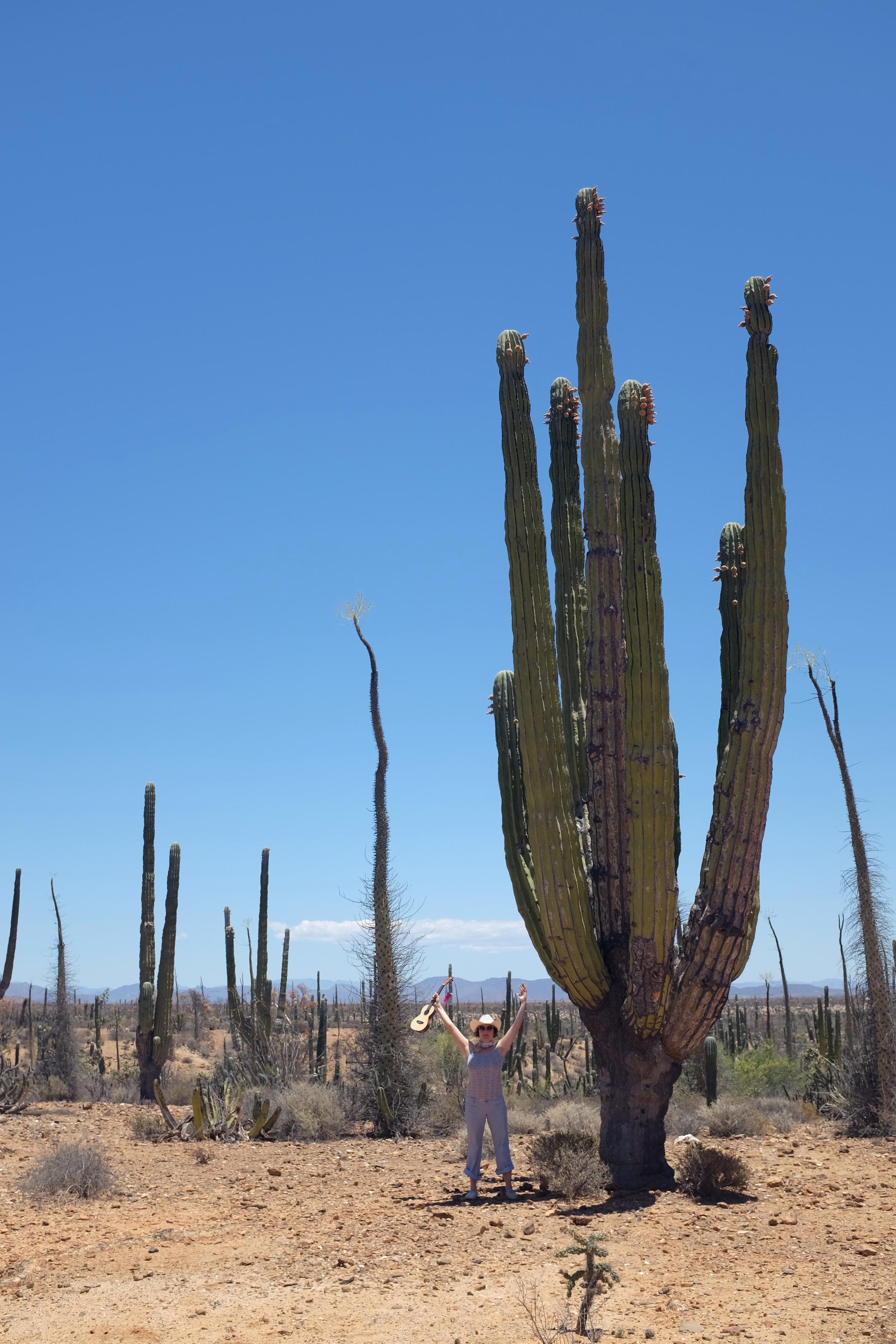 zoe and the cactus.jpg