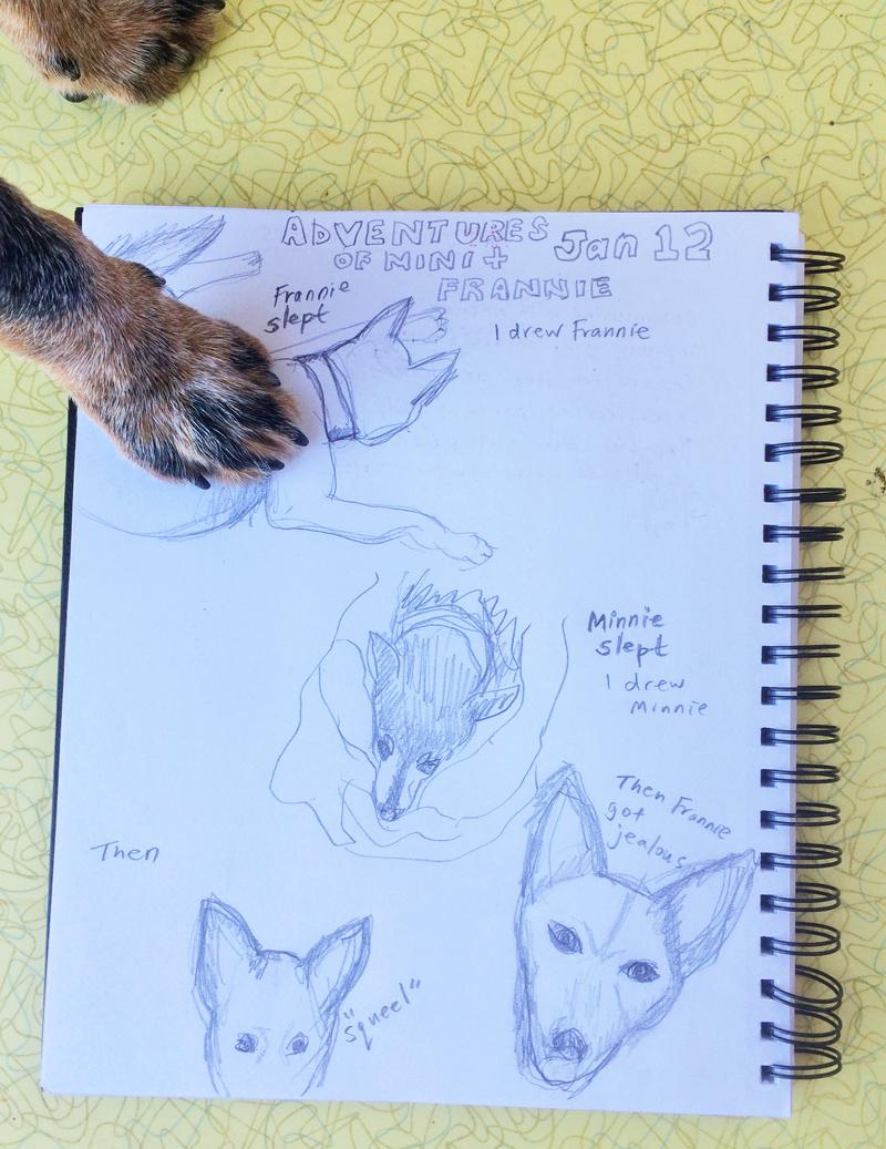 Doggie-Journal.jpg