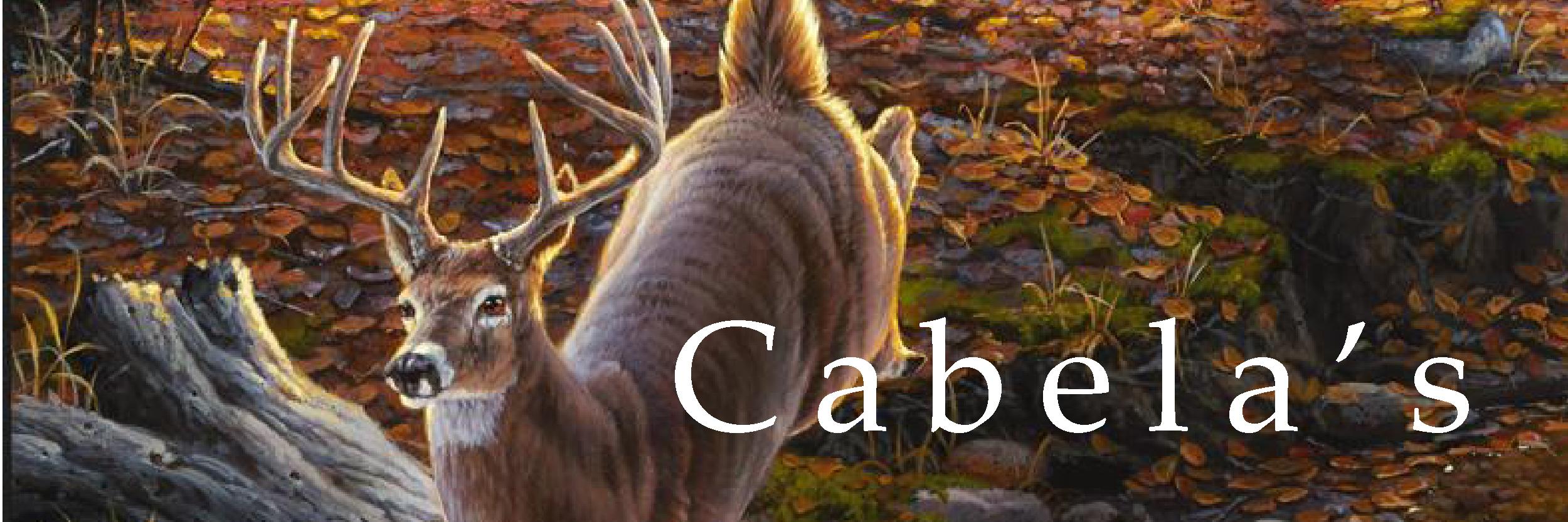 Cabela's | DBArt button.jpg