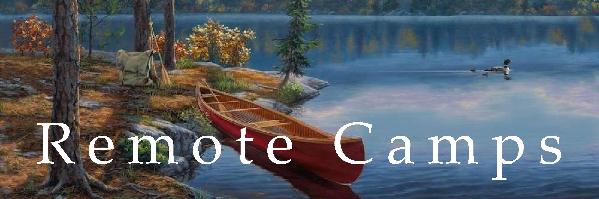Remote Camps | DBArt button.jpg