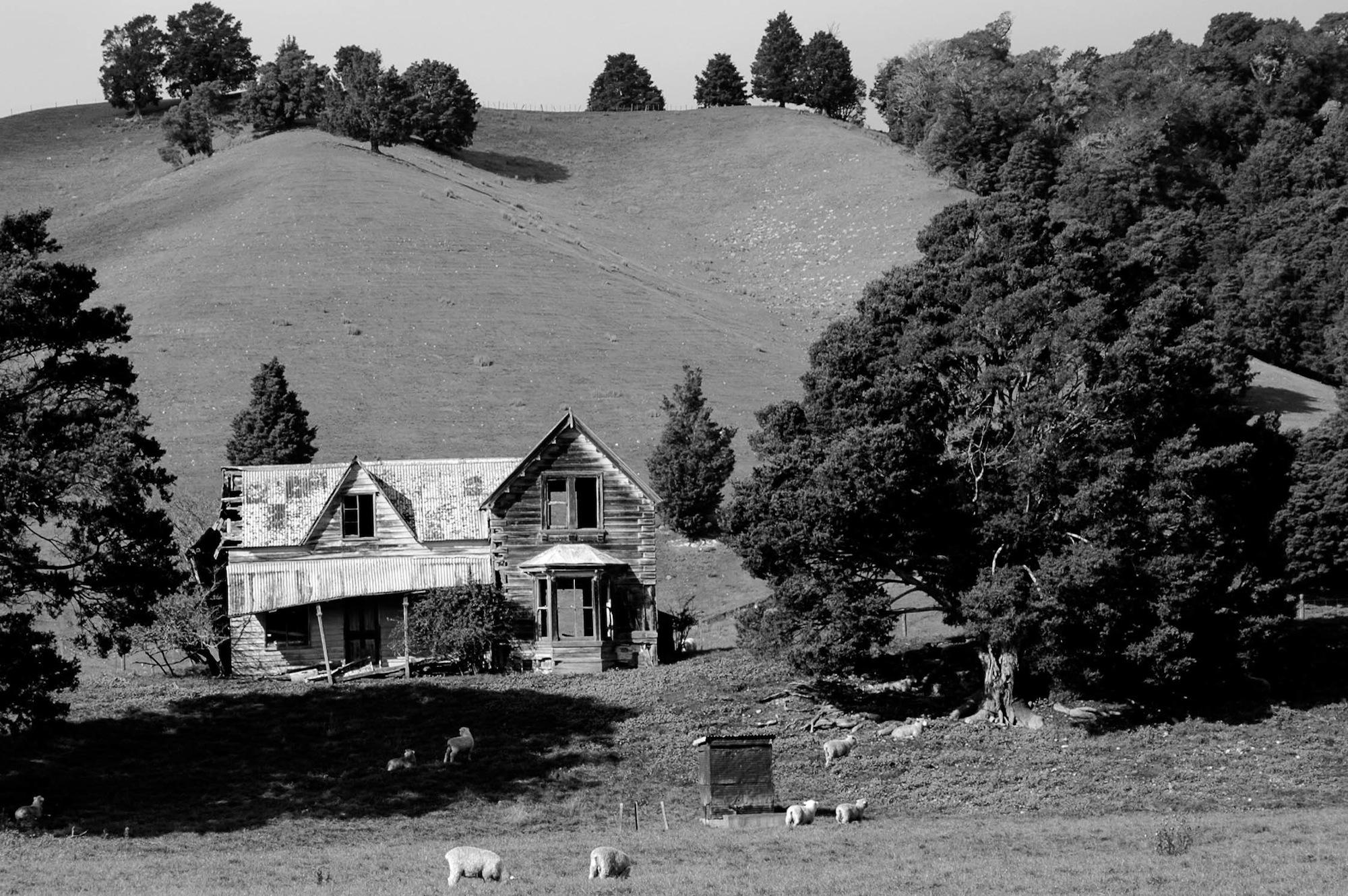 abandoned_house_new zealand_ben_howe_2.jpg