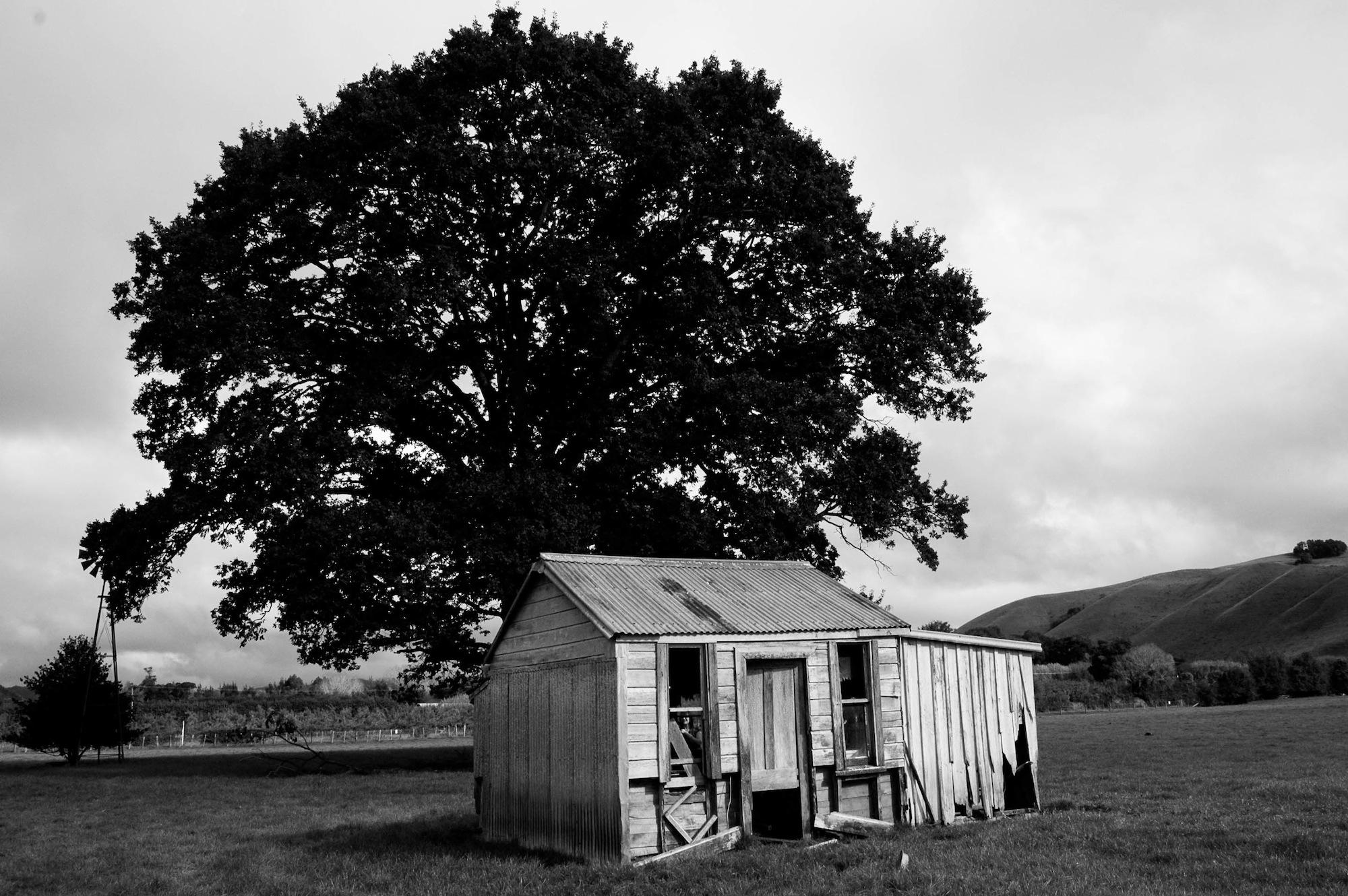 abandoned_house_new zealand_ben_howe_4.jpg
