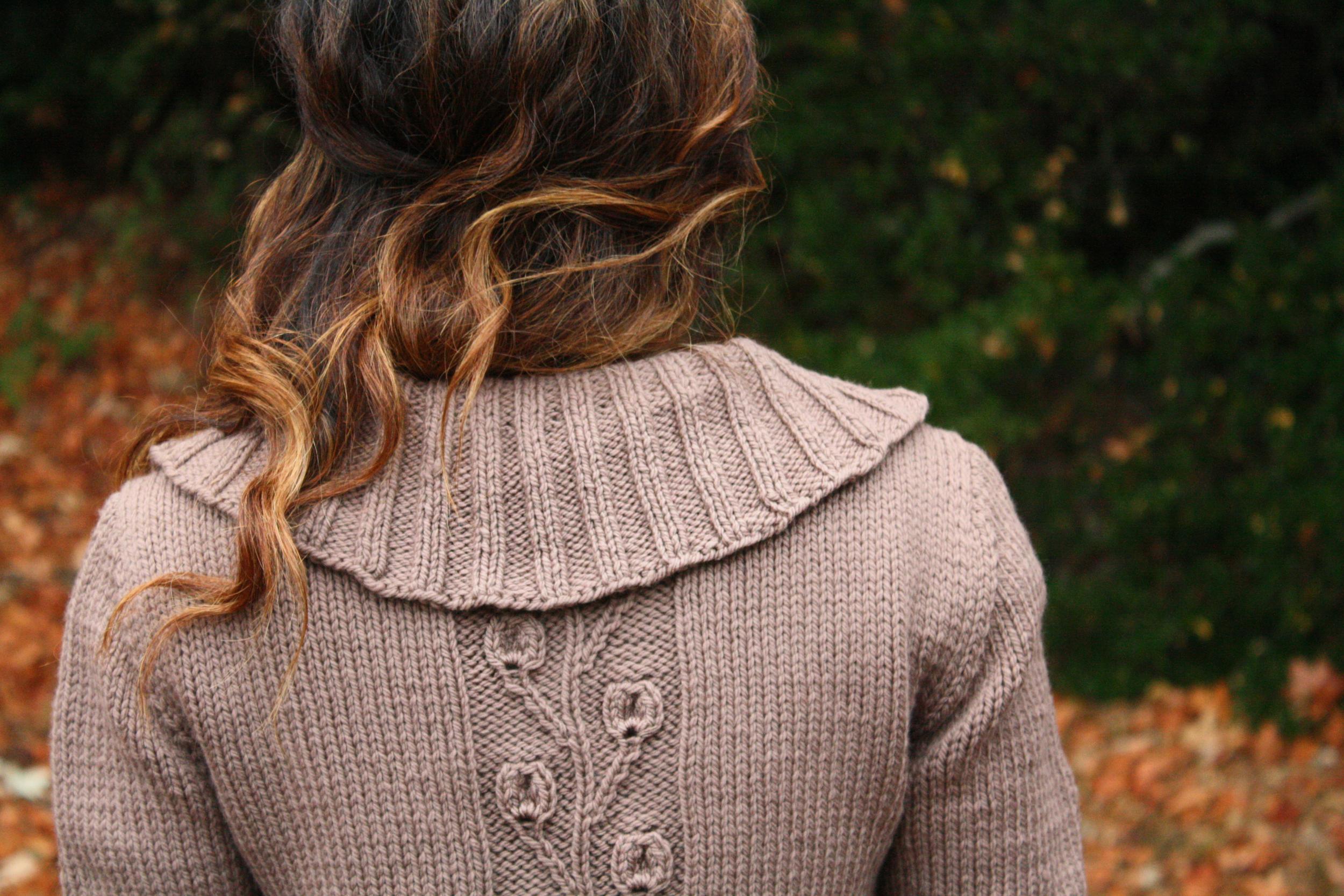Back of Collar.jpg