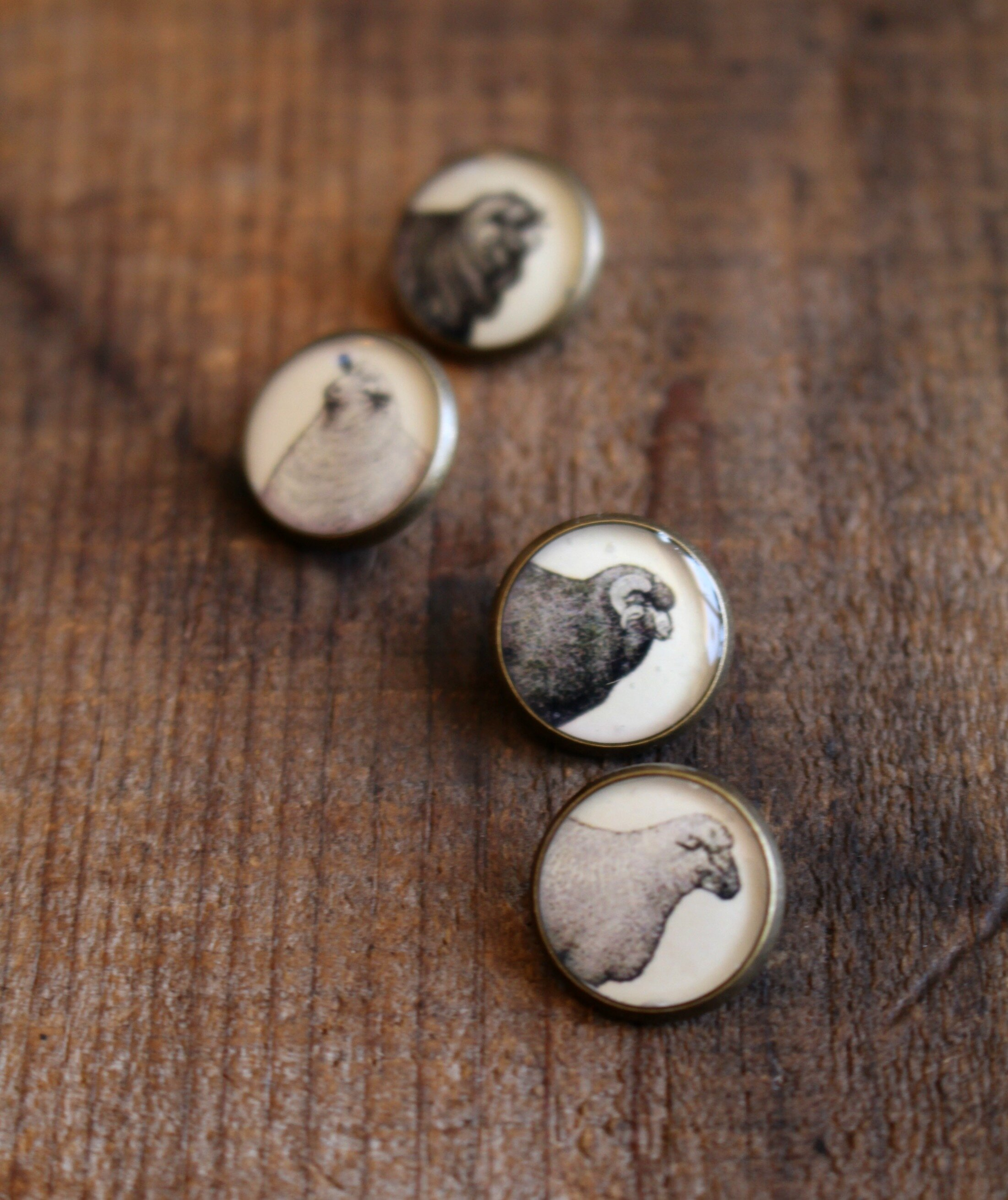 Sheep Buttons 1.jpg
