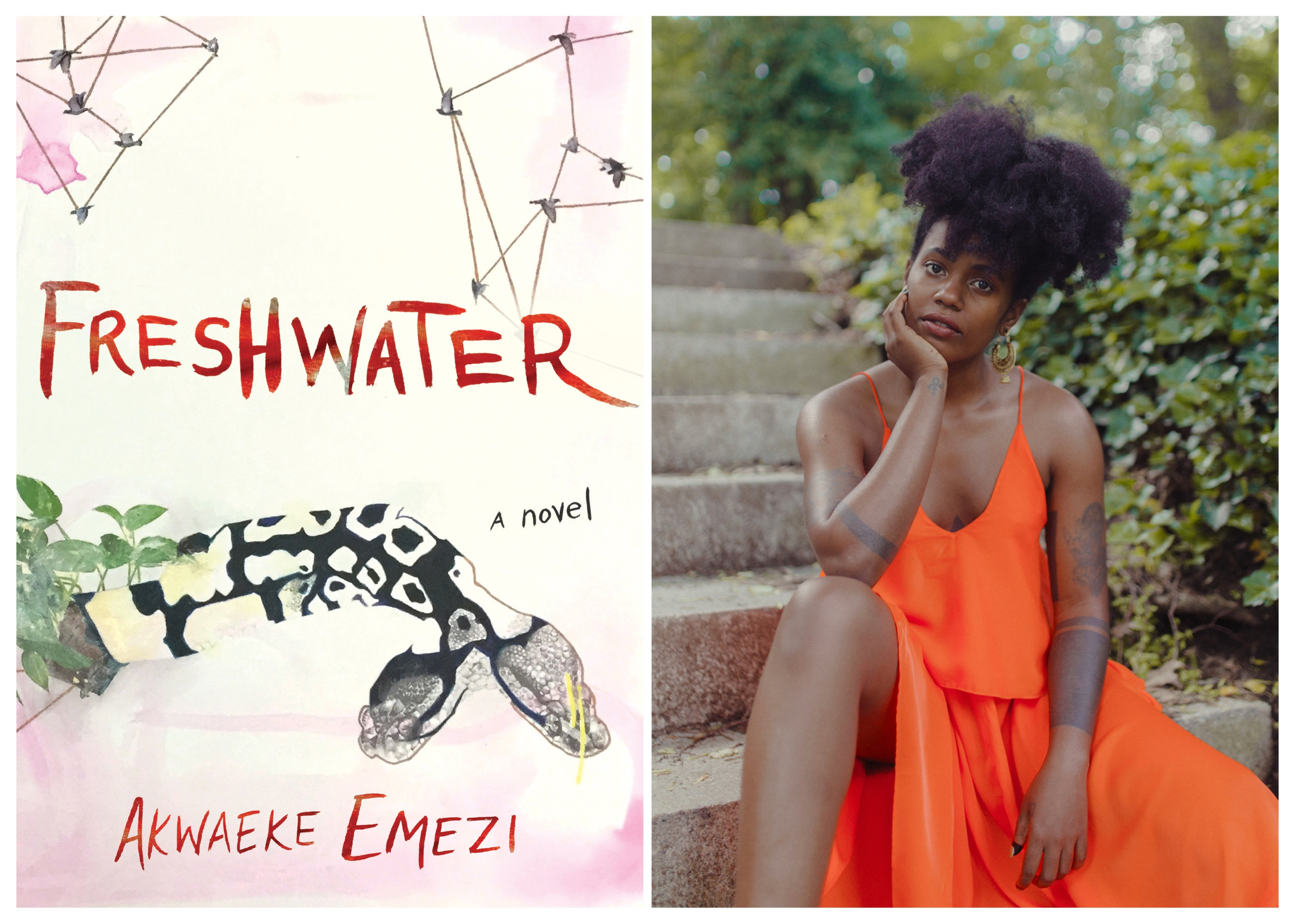 BOMB Magazine:  Interview: In conversation with Akwaeke Emezi on debut novel Freshwater