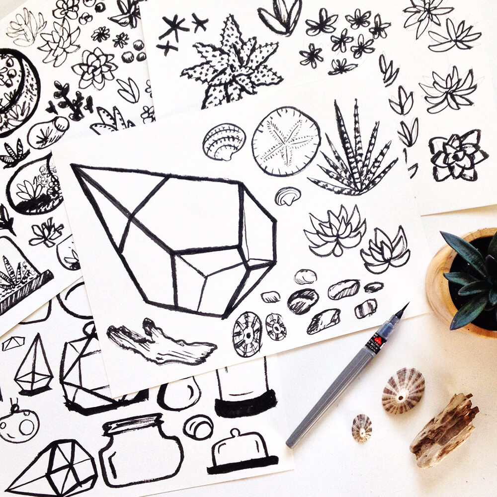 Kat_Marshello_Terrariums_Drawings3.jpg