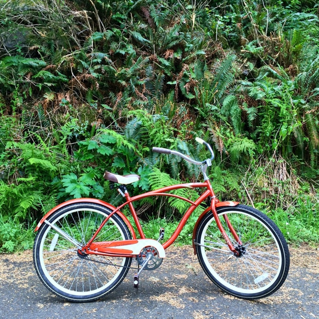 KMarshello_DiscoveryTrail_Bike2.jpg