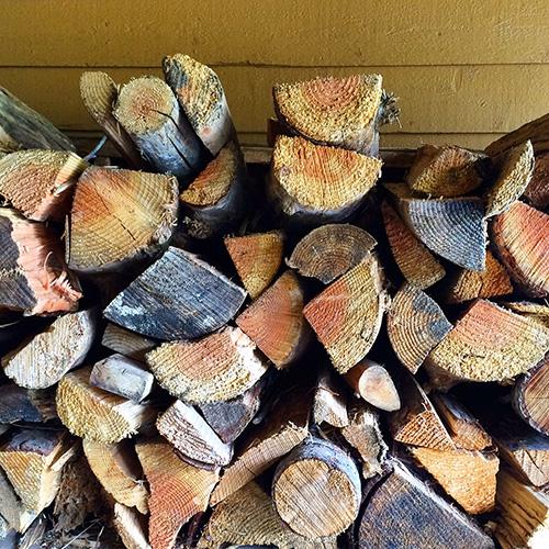 KatMarshello_MtRainier_firewood.JPG