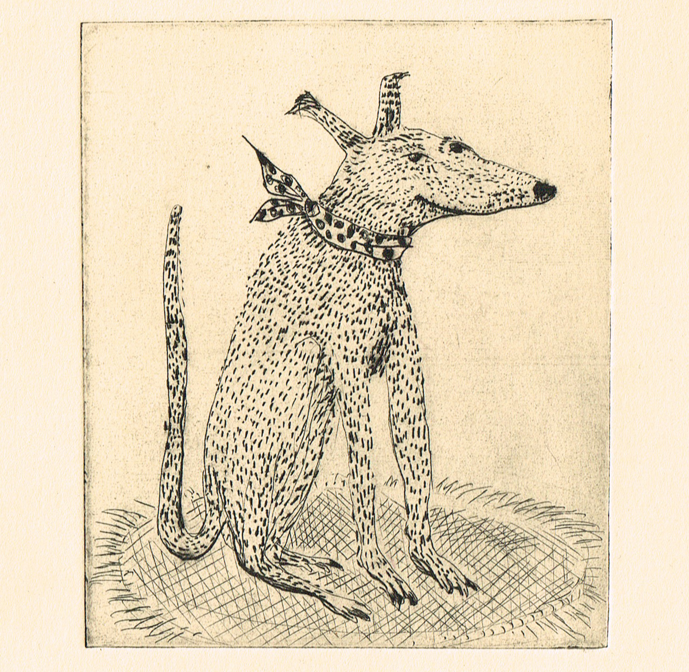 dogdrypoint_treat.jpg