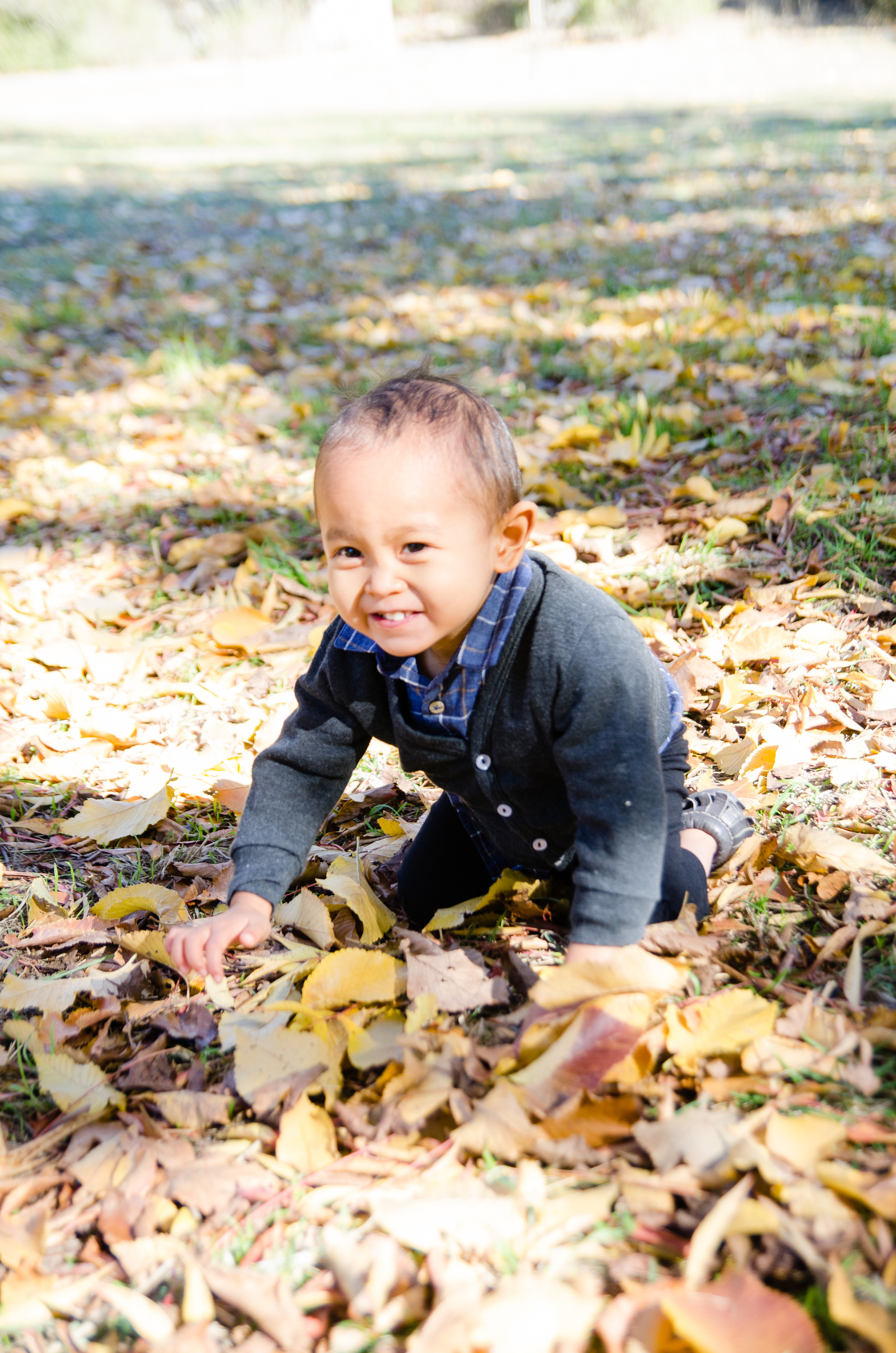 First time crawling through leaves during #optout