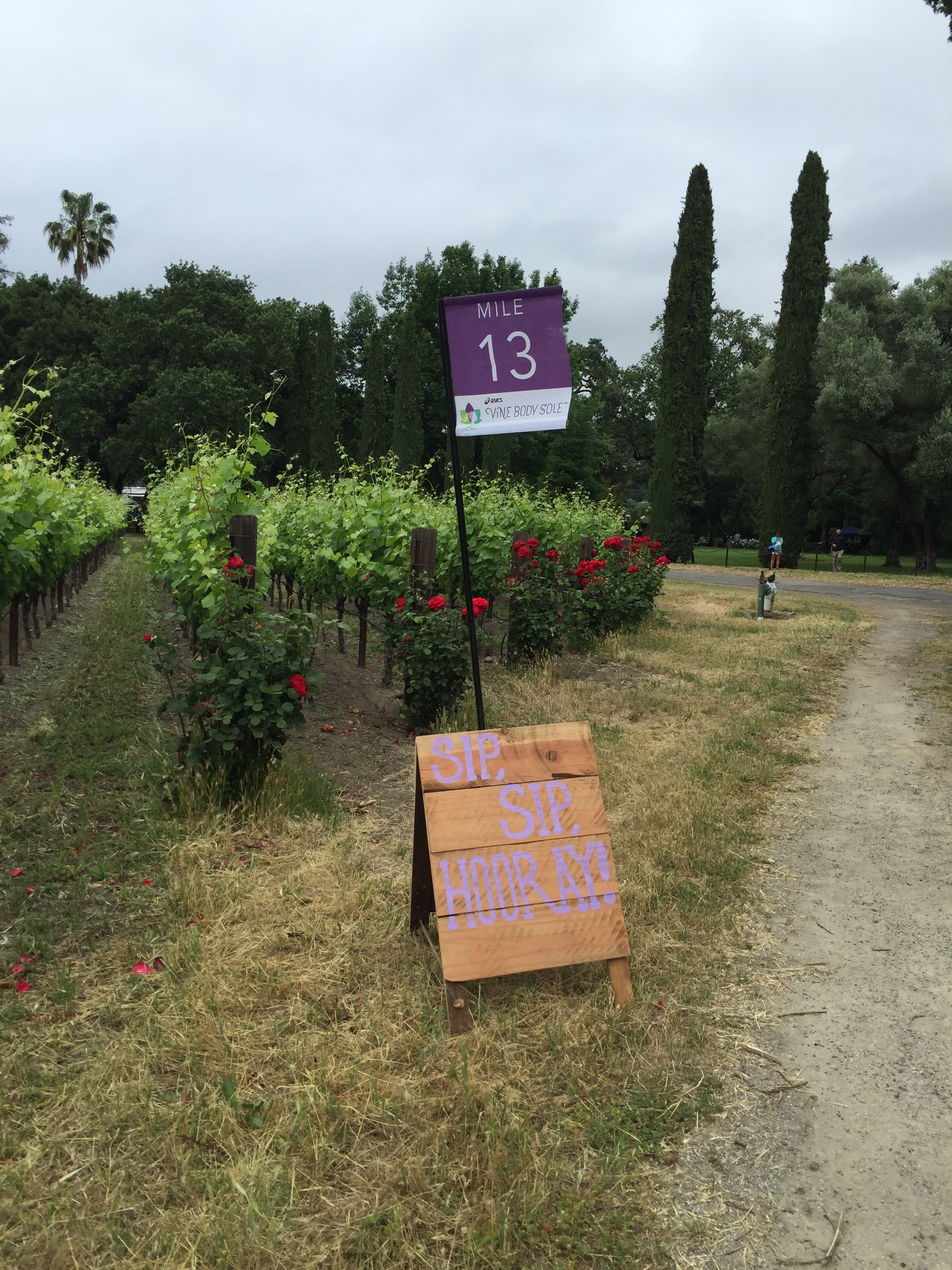 The purple is hard to read (hence why I didn't share the other mile signs) but mile 13, just around the corner...