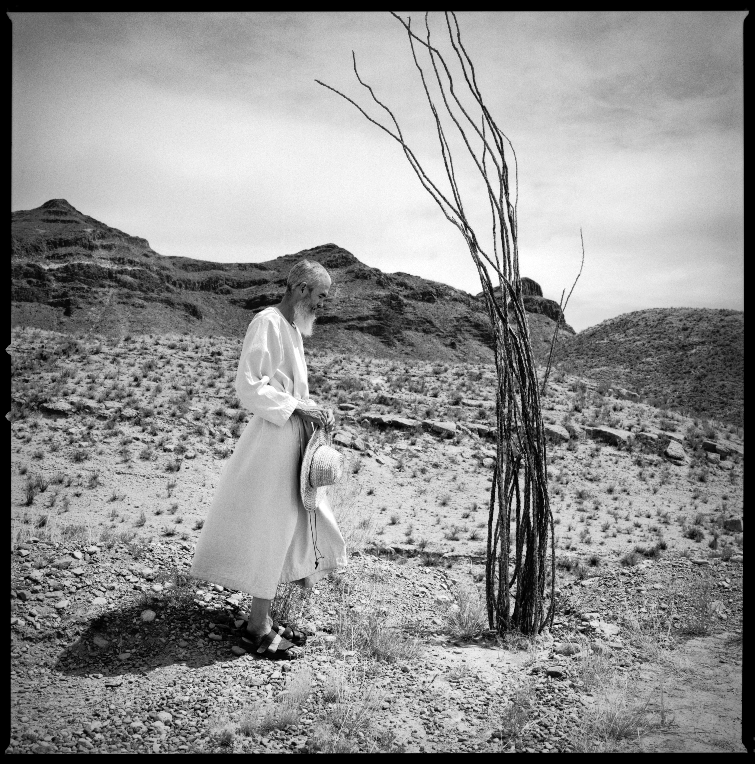 Monk with an Ocotillo.  Shafter, Texas, 2014   Made with Hasselblad 501c with Kodak Tri-X 400 b&w film