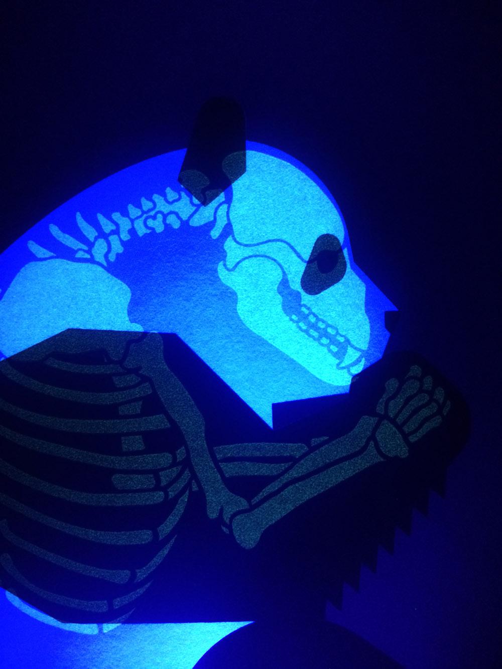 Panda-skeleton.jpg