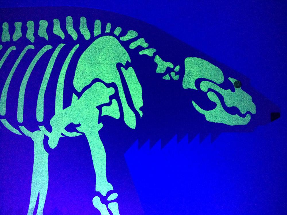 Polarbear-skeleton.jpg