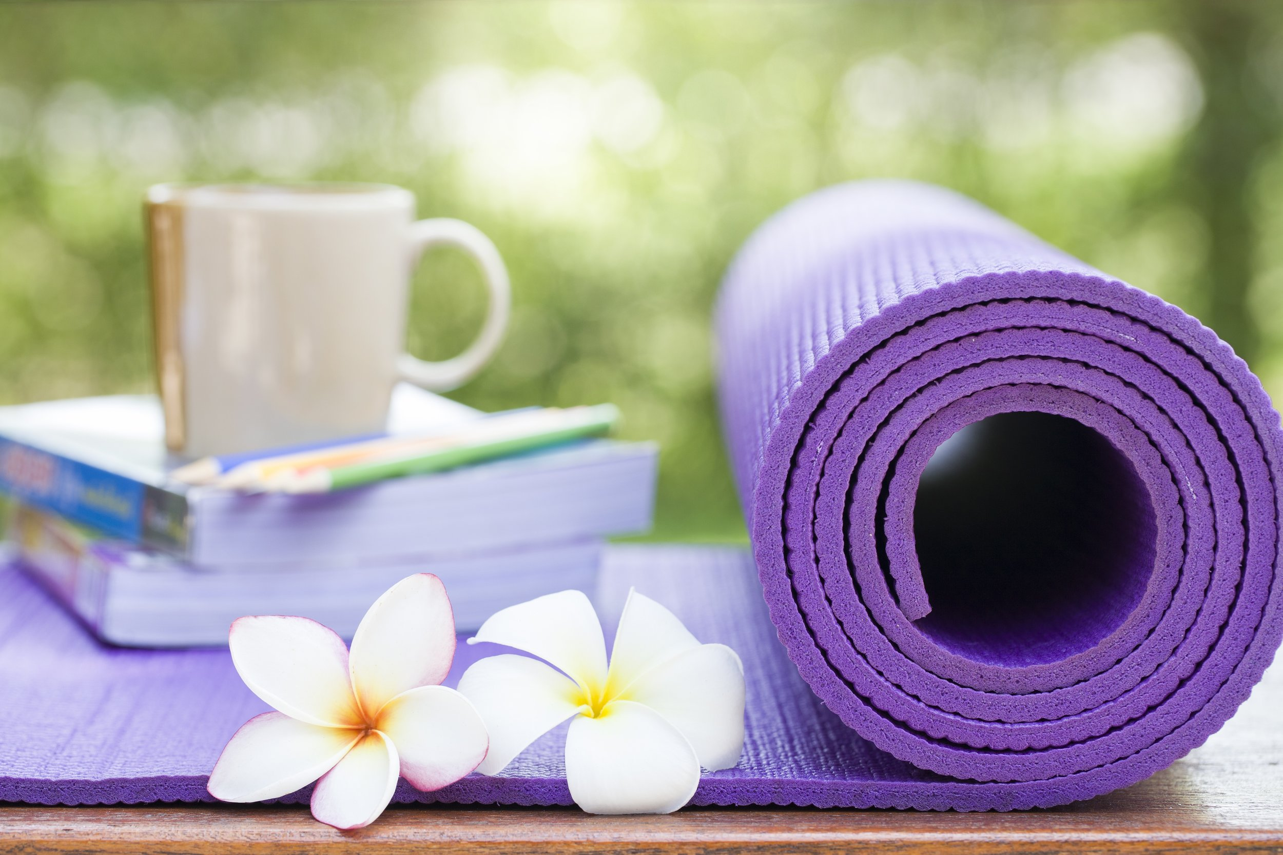 300hr Advanced Training -500hr Certification - Starting January 2020 at Mosaic Yoga in Germantown, WI