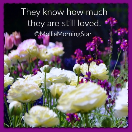 Those in Spirit Know How Much They are Loved | Psychic Medium | Chicago Botanic Garden | Spring