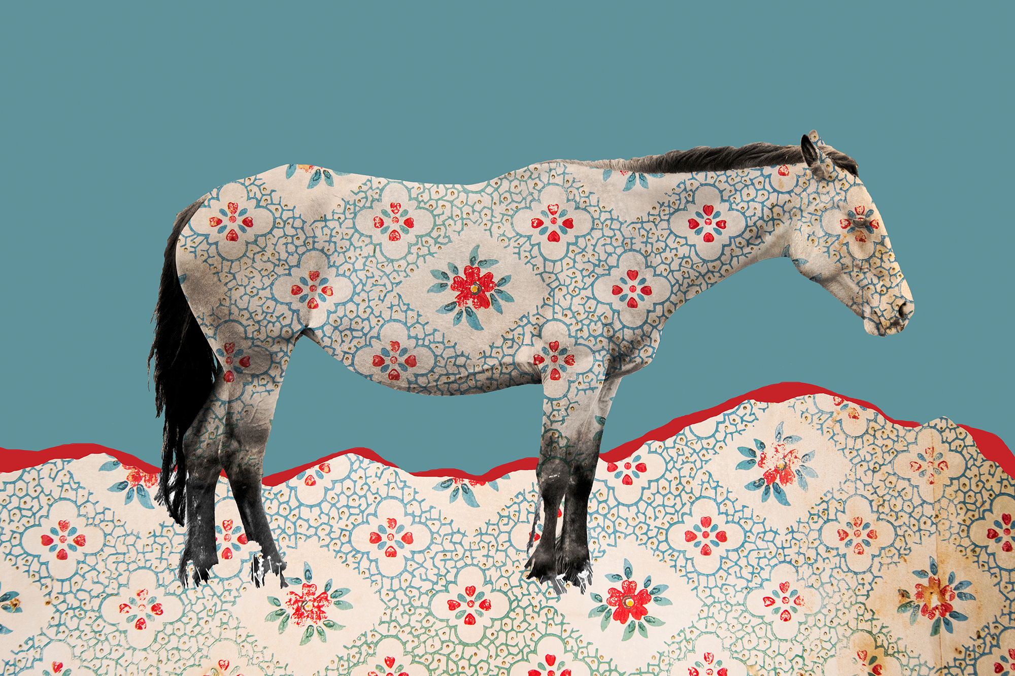 { Horse No. 16  } Pictured is a horse which was photographed in Southwest Montana on the edge of the Little Bighorn National Battlefield. The pattern laid over it is a photograph of wallpaper from an abandoned homestead on the Northern prairie of Montana.