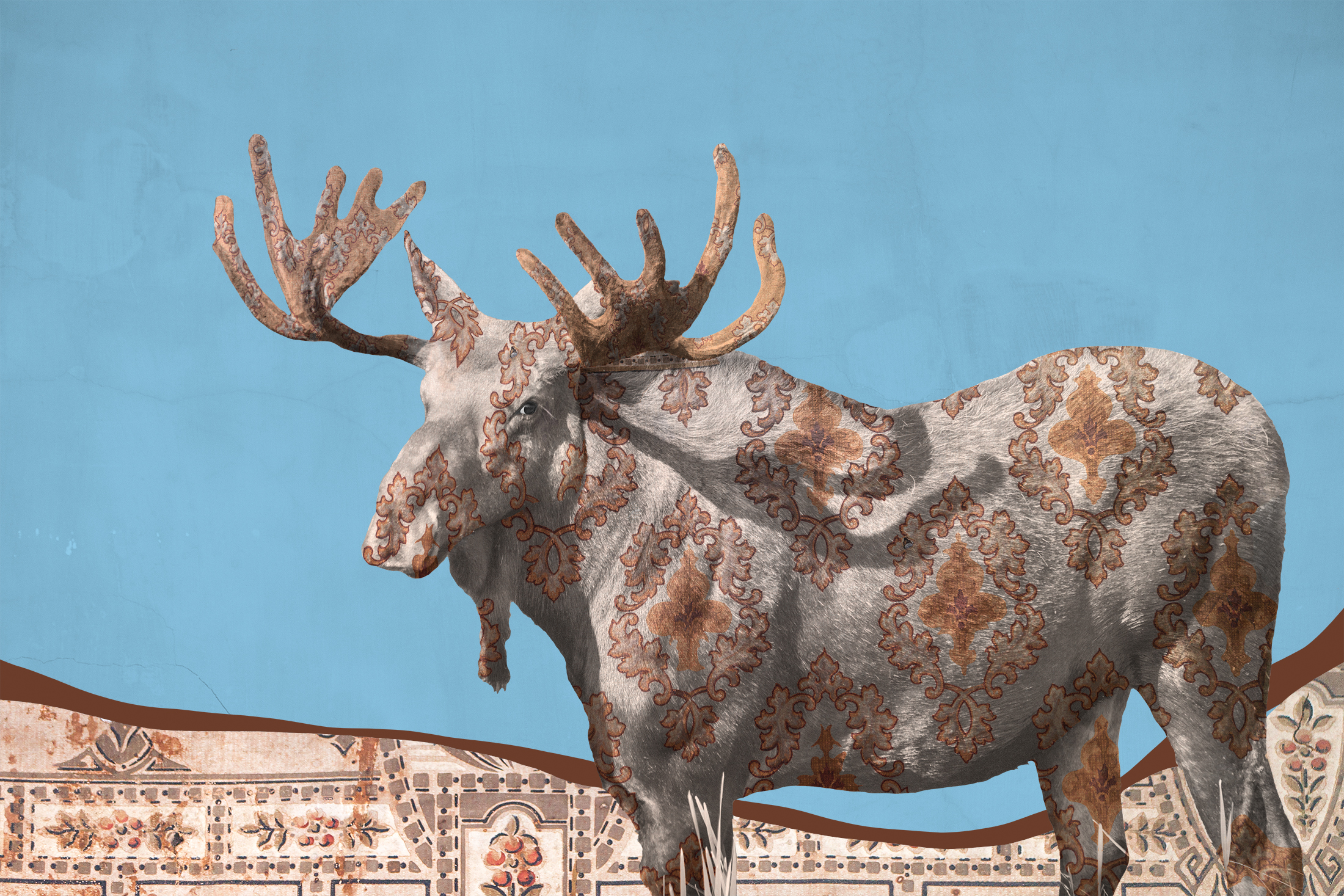 """{ Moose No. 1 }  I photographed this bull moose in Montana's incredible Madison Valley. The patterns I photographed in the National Historic District of Butte, Montana. These two wallpapers hang together in a shack in what is known as the """"Cabbage Patch"""", a shanty town that was once filled with hastily-built shacks and began in the 1880s. These shacks were built of found lumber and scrap metal and folks who lived there would line the interior walls with found materials in an attempt to insulate themselves from the harsh Montana winters. Scoured wallpaper scraps, cardboard, cloth, and newspapers would be used. These wallpaper scraps still hang together in one of only four Cabbage Patch dwellings to stand the test of time."""