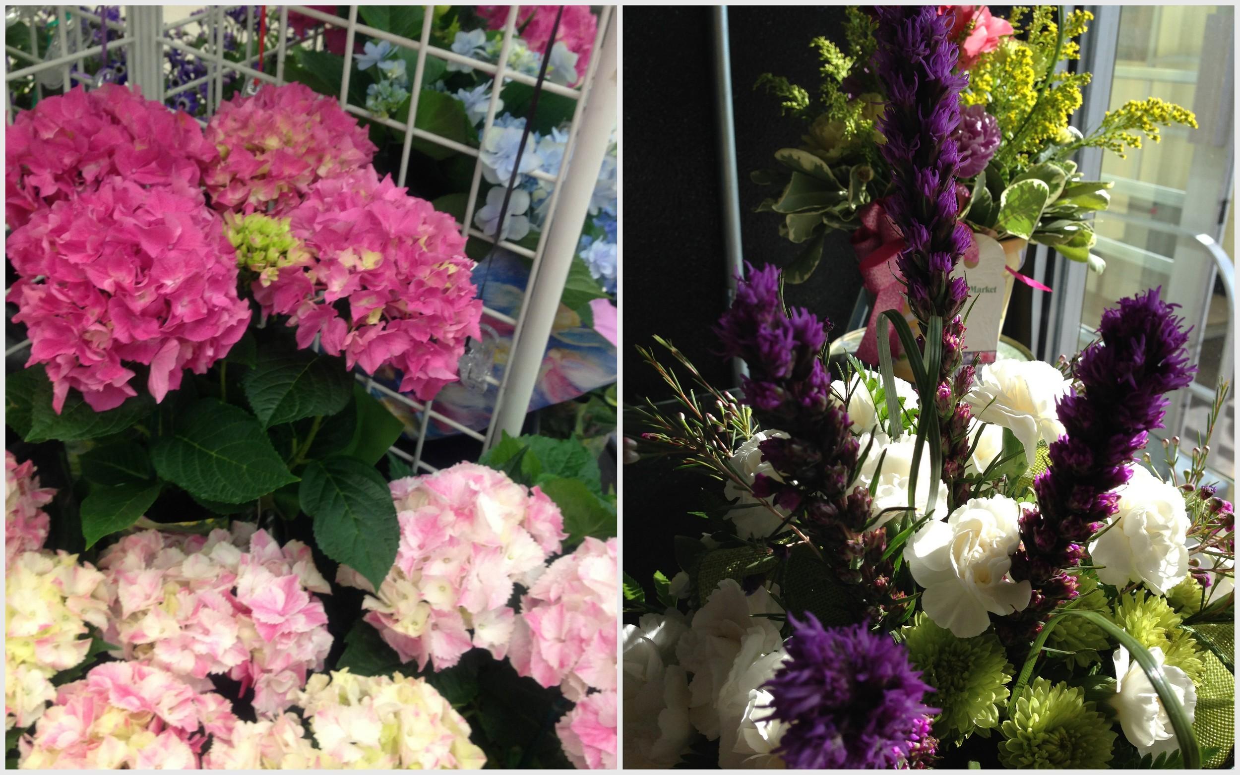 flowers collage.jpg