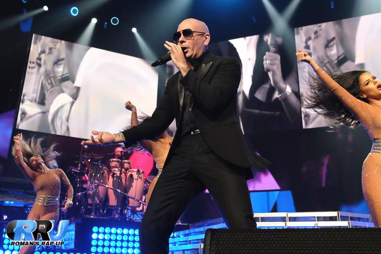 Pitbull_-13.jpg