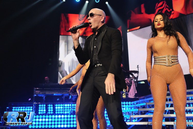Pitbull_-9.jpg