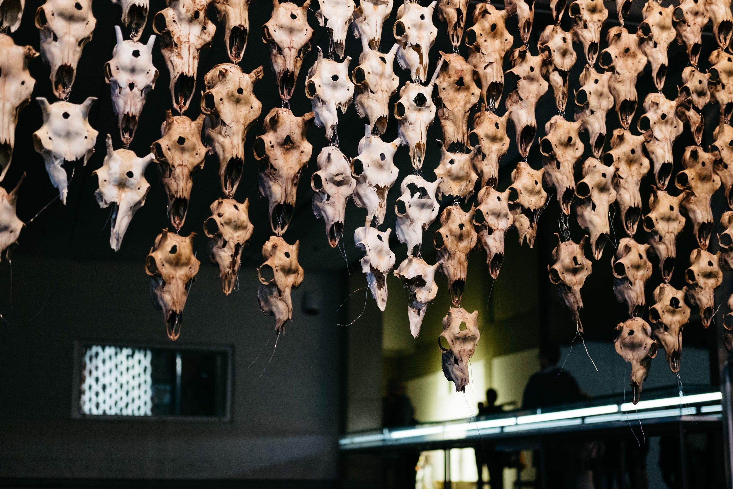 documenta14-kassel-kunst-wearecity-simonhariman-2017-24.jpg