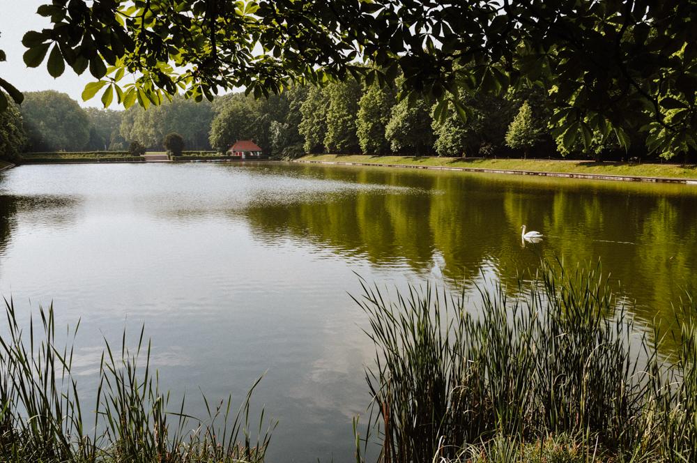 bluecherpark-weiher-koeln-wearecity-atheneadiapoulis-1.jpg