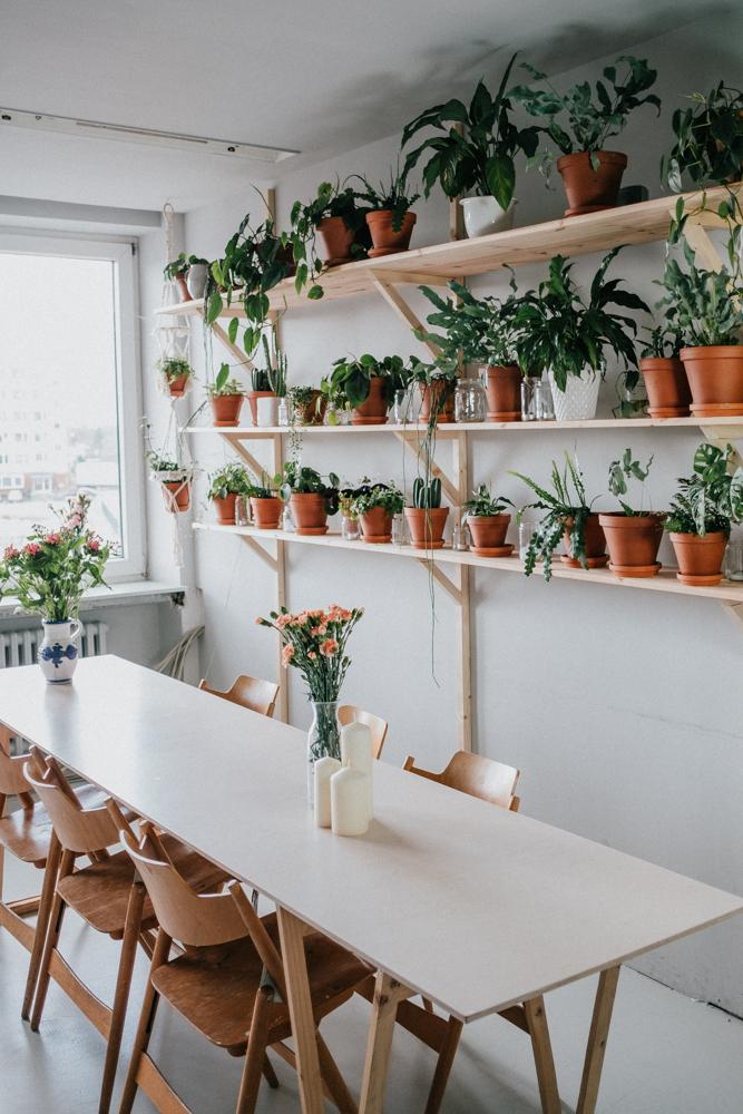 pflanzenfreude-urbanjunglekitchen-einweihnung-koeln-wearecity-simonhariman-11.jpg