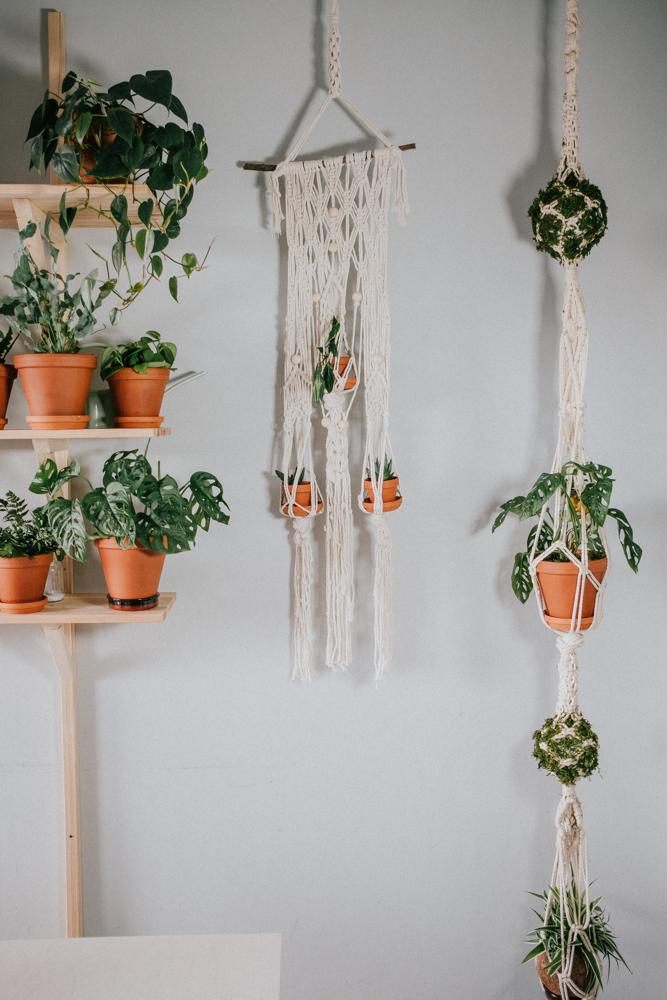 pflanzenfreude-urbanjunglekitchen-einweihnung-koeln-wearecity-simonhariman-12.jpg