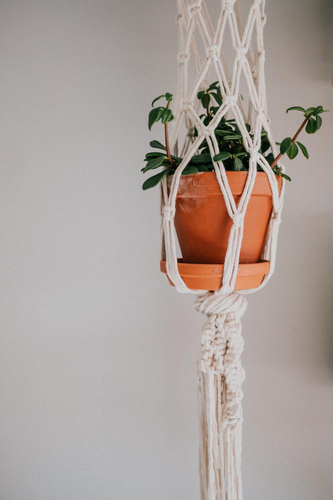 pflanzenfreude-urbanjunglekitchen-einweihnung-koeln-wearecity-simonhariman-19.jpg