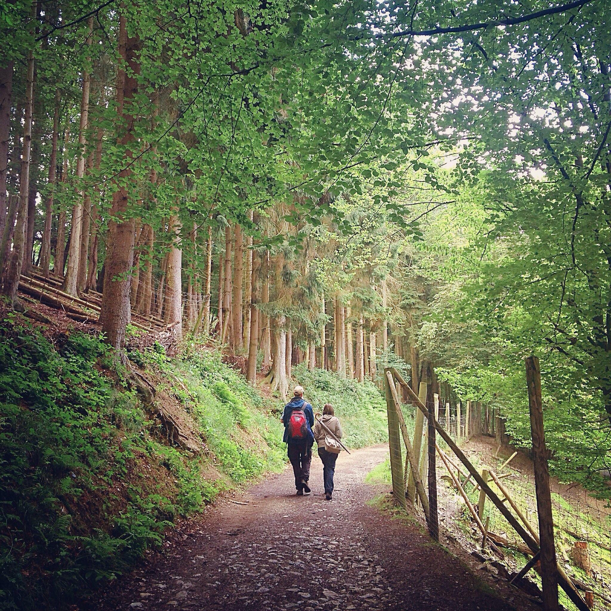 Eifel region, in Germany.