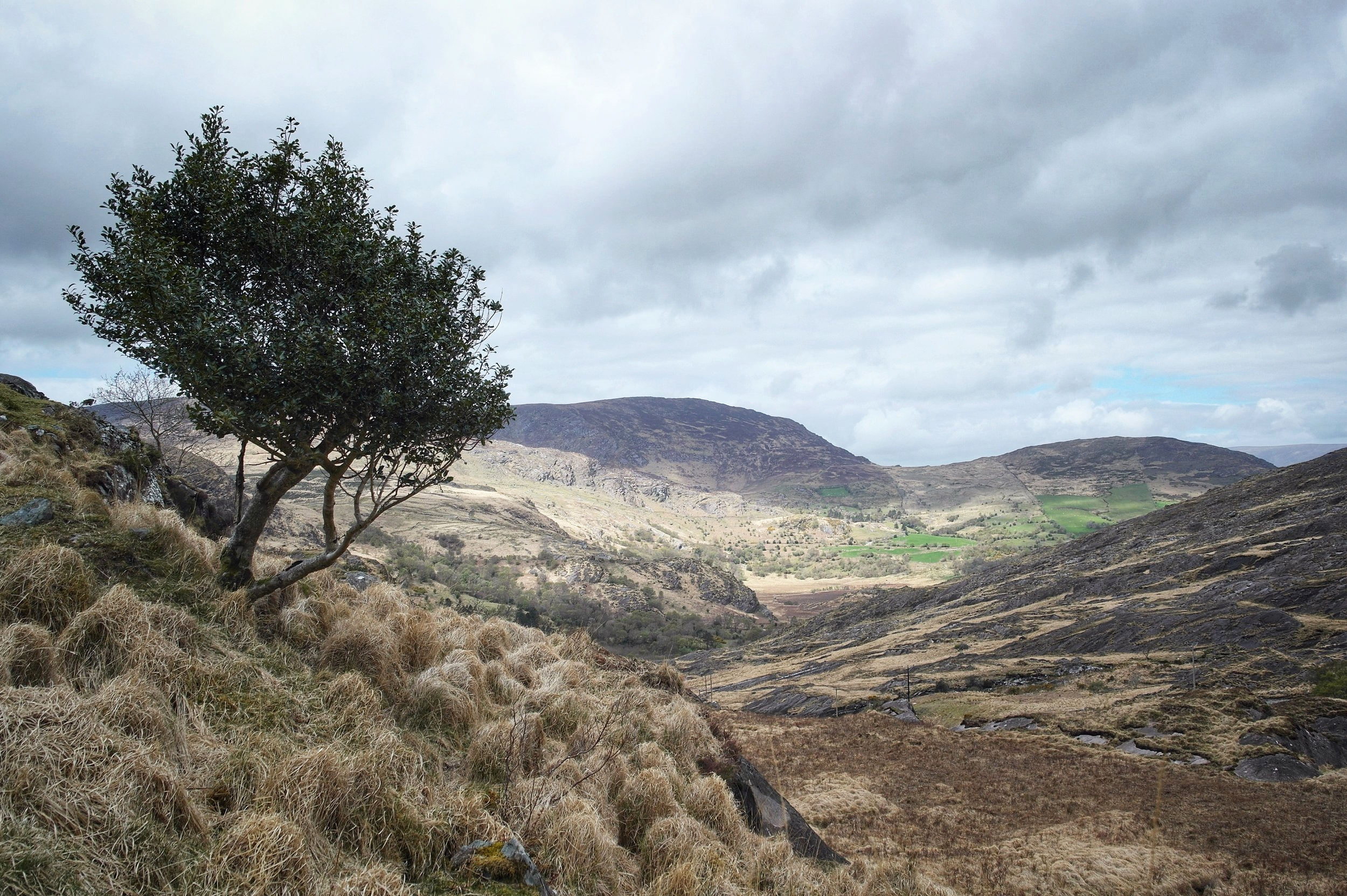 The Shehy Mountains of Southern Ireland. An amazing wilderness I only discovered this year. I would love to come back here again one day and explore some more.