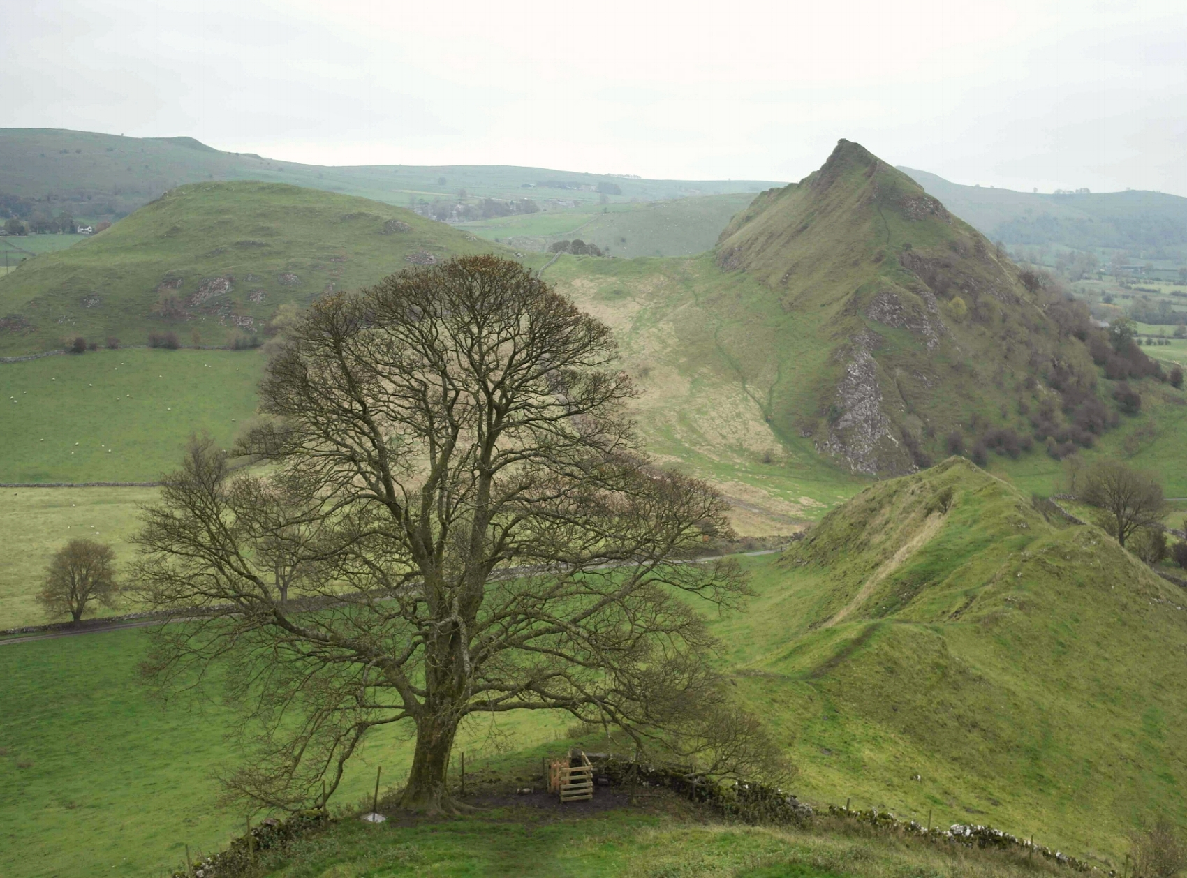 What a great view it is. Looking back towards (the smaller) Parkhouse Hill, as you slowly climb up the steepest part of Chrome Hill.