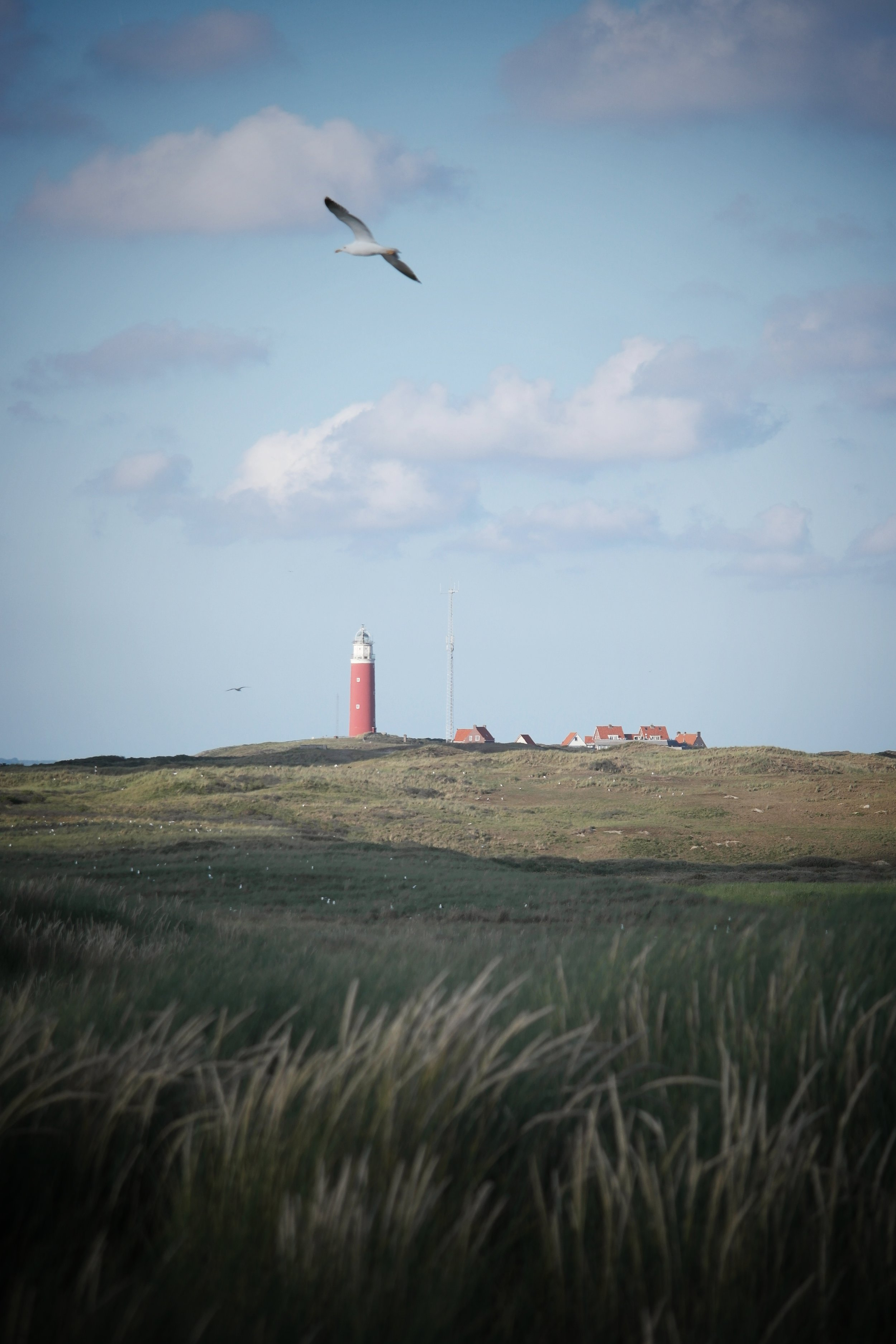 The Lighthouse at near to De Cocksdorp, signifies the end of the island, an amazing landscape feature and a brilliant place to visit.