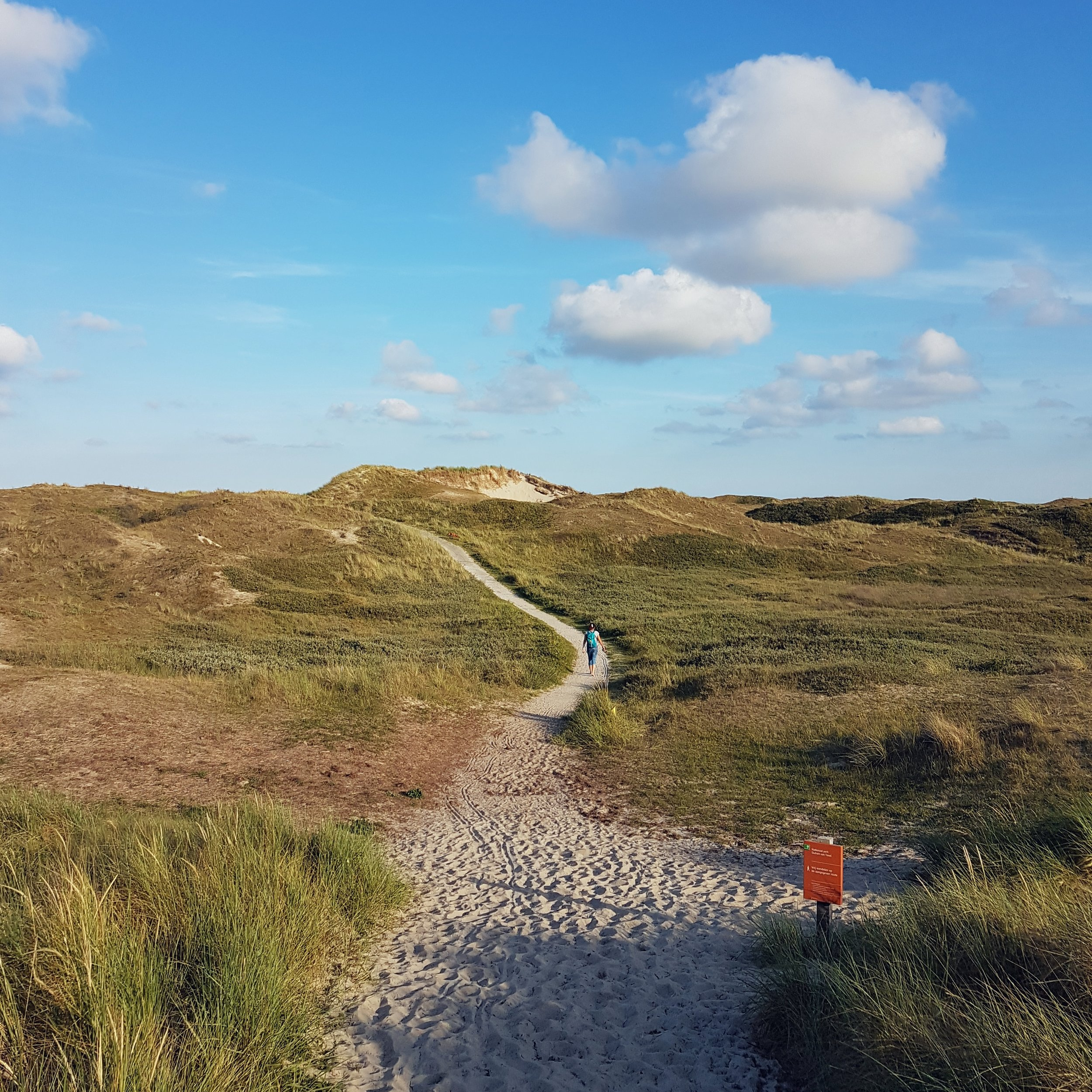 The dune area is pretty remarkable and it is a great place to wander and explore.
