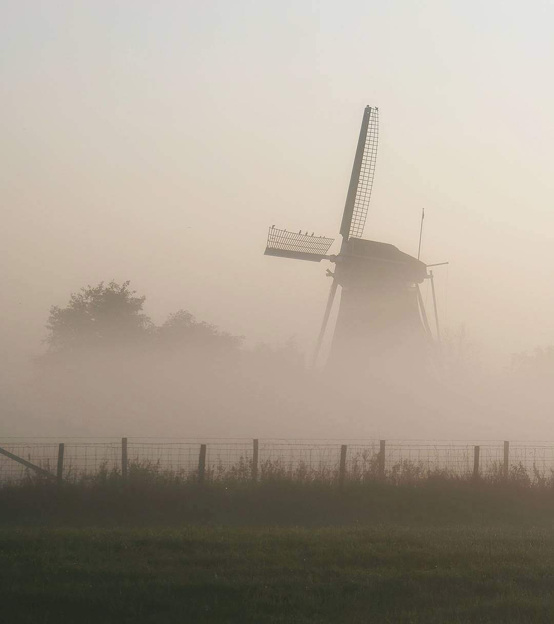 One of those beautiful moment out on the bike, where the early morning mist lifts to reveal a very typical Dutch landscape feature.