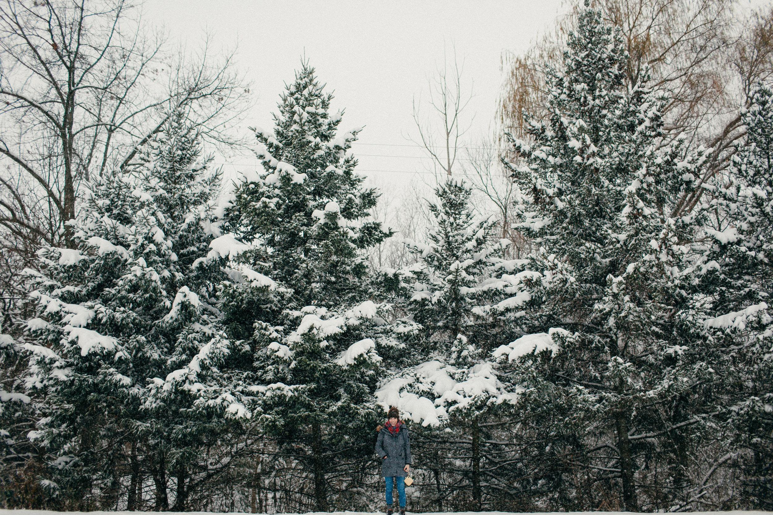 pure-michigan-winter1.JPG