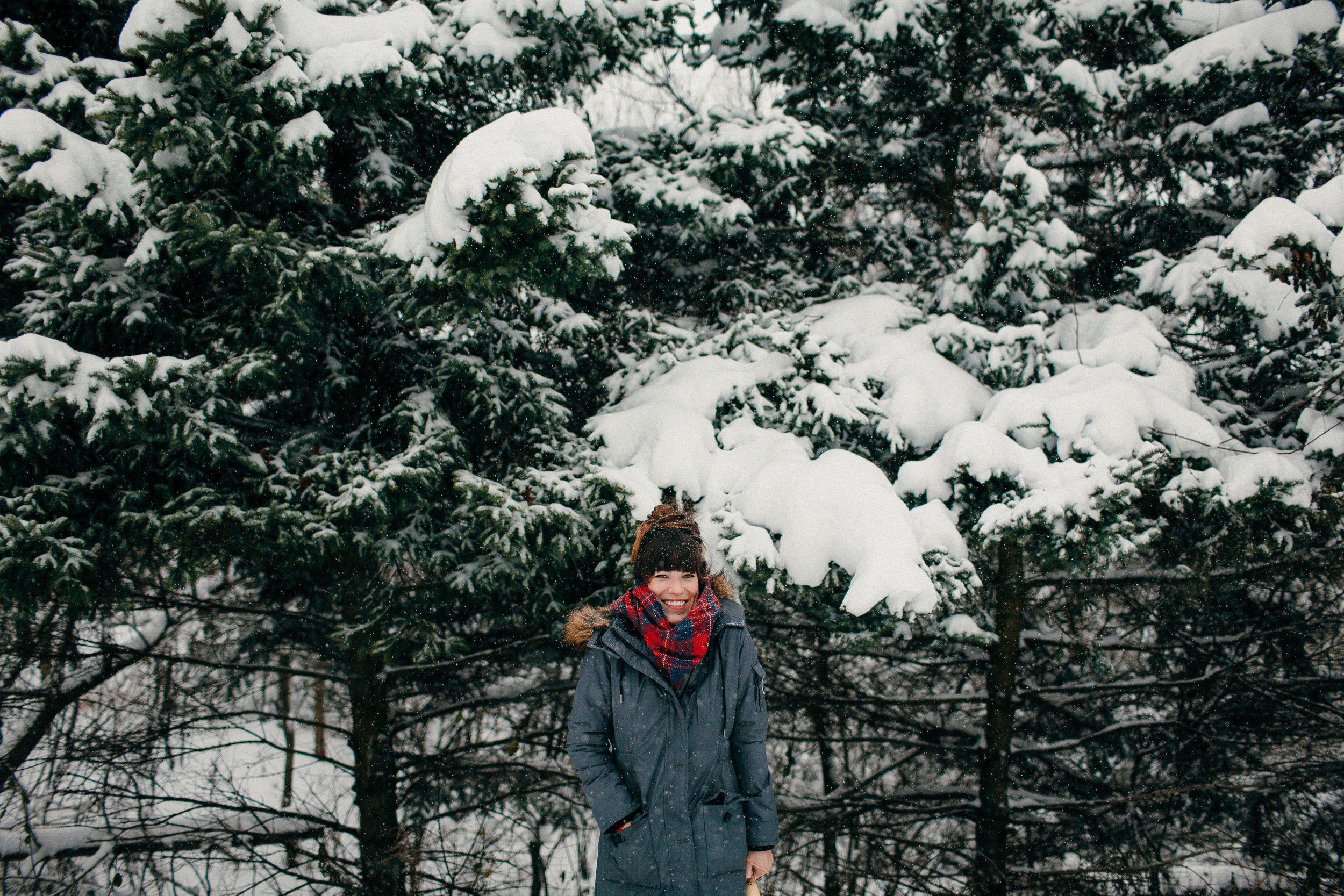 pure-michigan-winter3.JPG