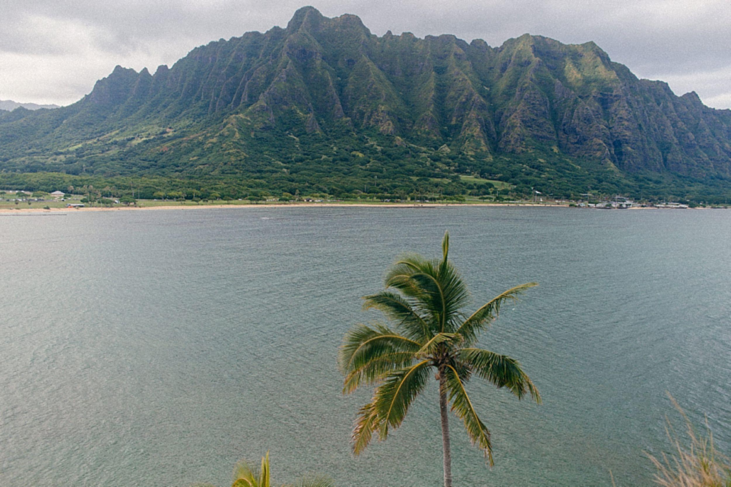 living-in-hawaii-north-shore_0017.jpg