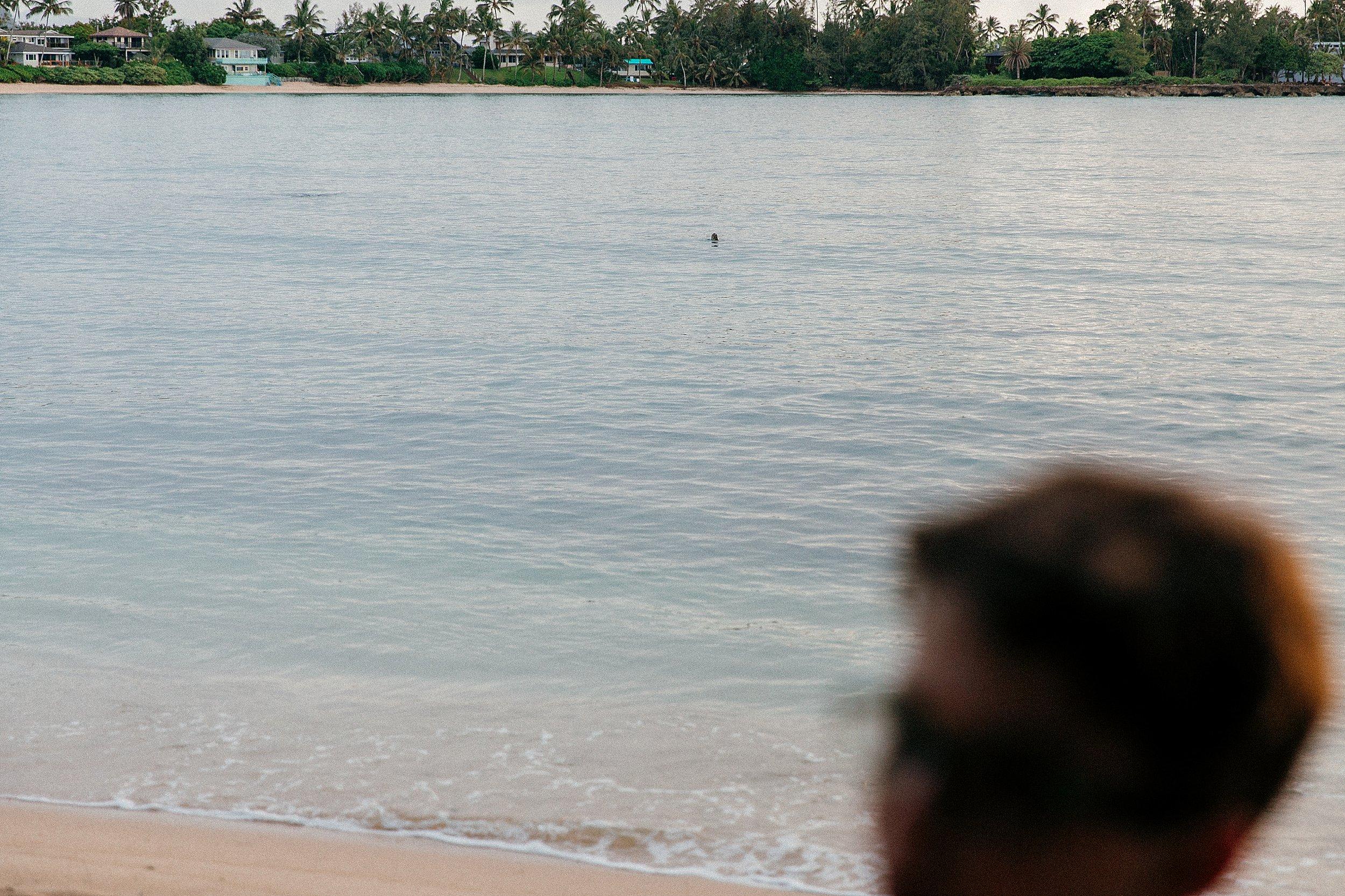 Family Session at Kawela Bay Banyan Tree near Turtle Bay Resort