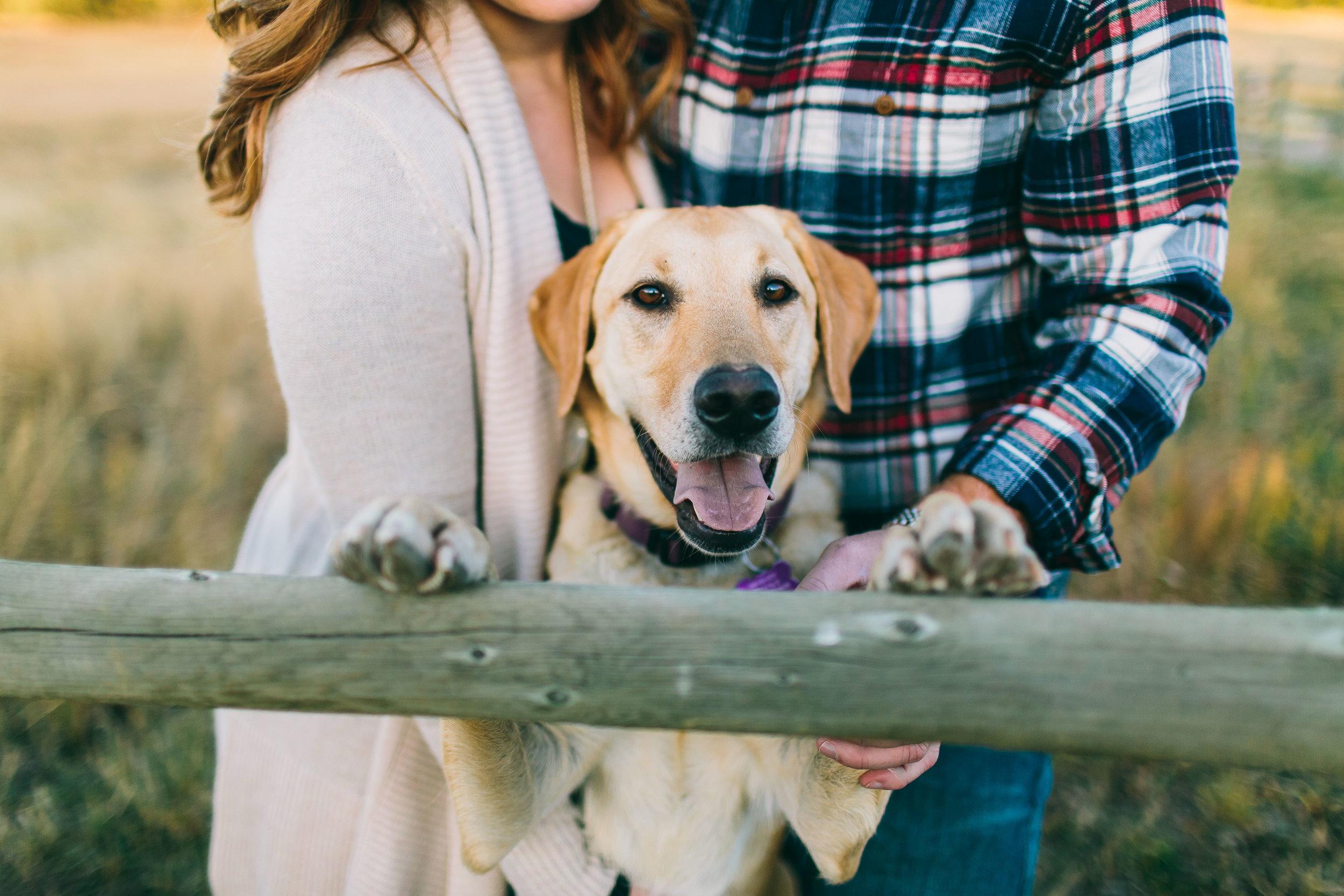 Kodie and Ben Engagements blog-27.jpg