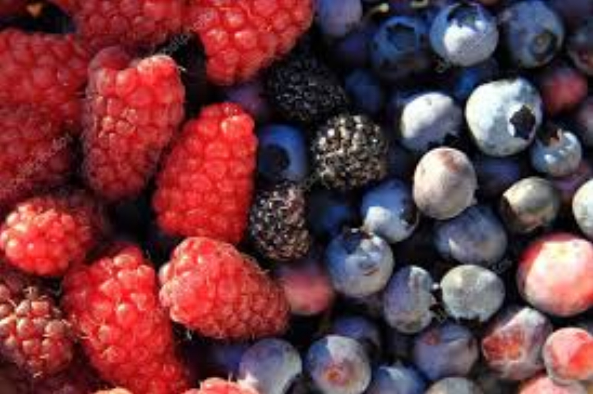blueberry and raspberry.jpg