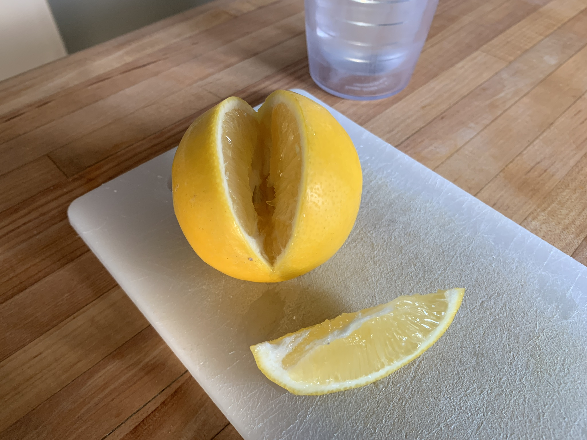 meyer lemon from 1 gallon.jpg