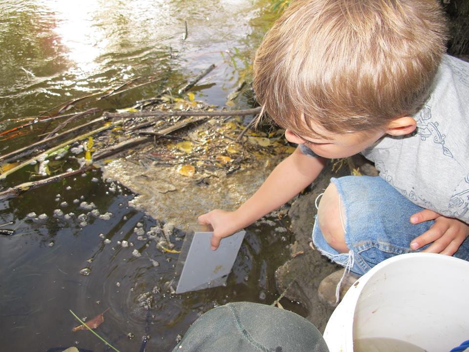 kid doing chena salmong.jpg