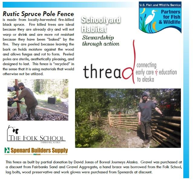 Spruce Fence.jpg