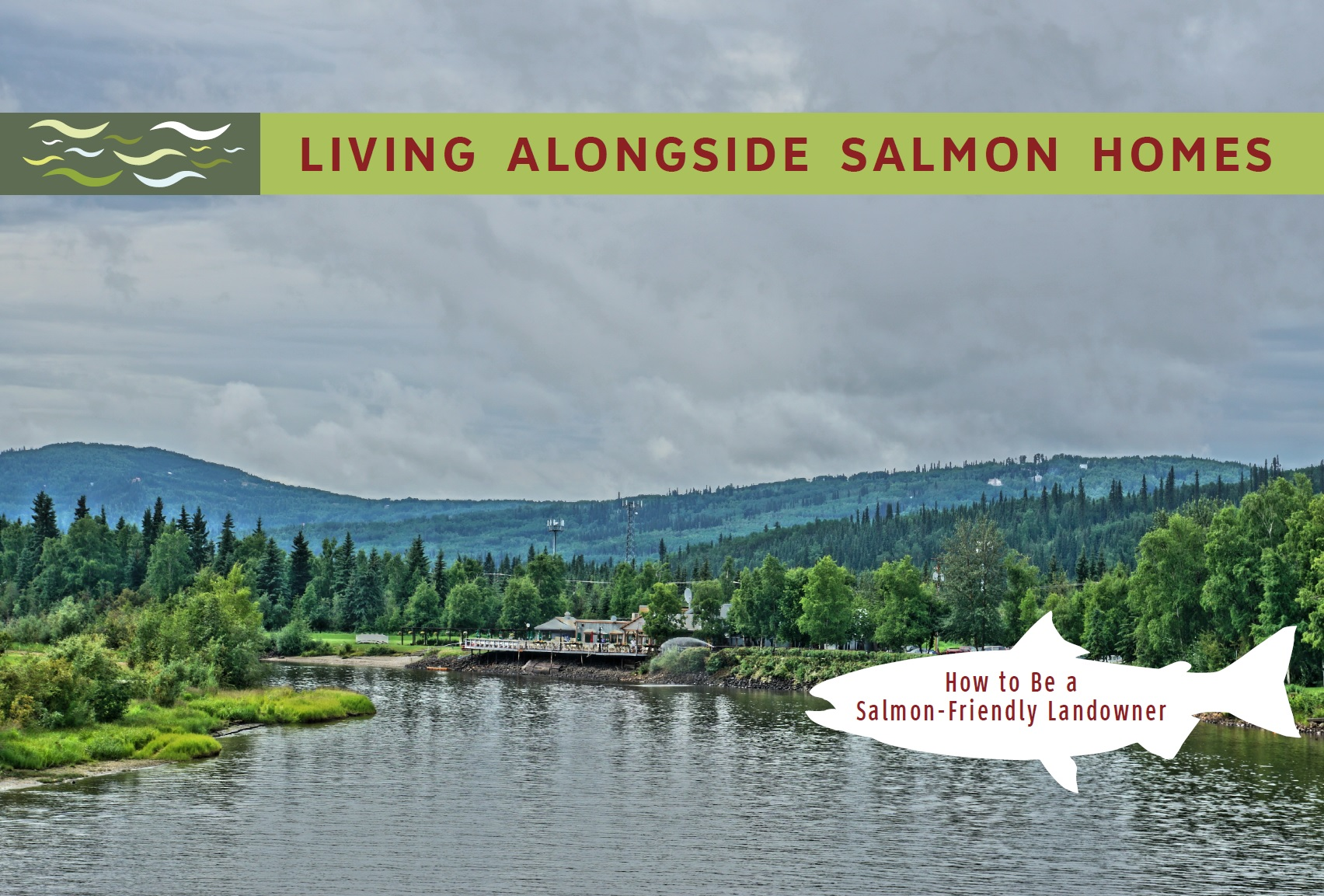 salmon book front.jpg